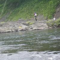 7月24日 郡上長良 亀尾島会 鮎釣り大会!