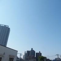 今朝(5月20日)の東京のお天気:晴れ、5月(後半)の作品:花を持つ童子