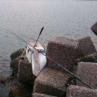 17.1.5(木) チヌ釣り 長与