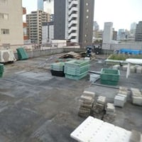 屋上菜園95 (H29.3.29~)
