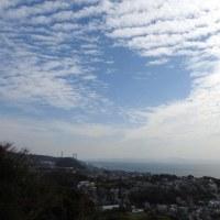 10/23日撮影 三浦海岸+霊園