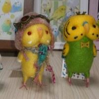 セキセイ文化祭 その2とジャンボのぴよ丸のピンチ