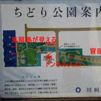 川崎港人道トンネルで扇島へ