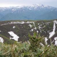 5月11日菅名岳に登りました。