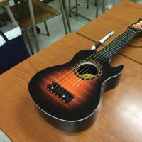 これはギター?ウクレレ? ギターです。