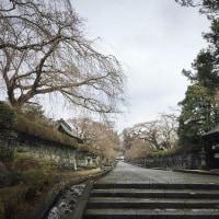 お山のお寺。