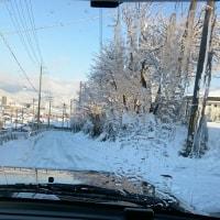 朝は道路が真っ白( ; ゜Д゜)