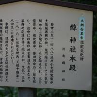 千葉県大網白里市、金谷郷 縣(あがた)神社のスダジイと大杉です!!