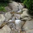 清流と森の小径トレッキング