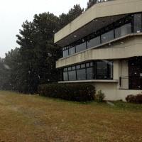 雪降る干潟