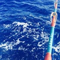 船釣り(*^o^*)