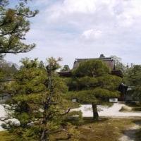 仁和寺の御殿