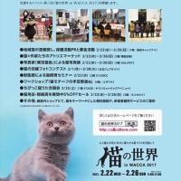 東池袋にあります「WACCA 池袋」で「猫の世界 in WACCA 2017」が開催されています。