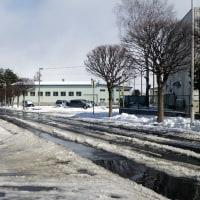 17-02-21 春の淡雪