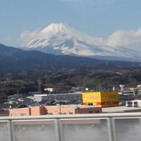小田原城 富士山