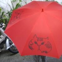 み~ちゃんの傘~(=^ェ^=)