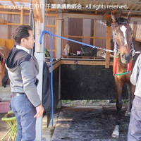 馬と共に。大ベテラン向山昇厩務員勇退