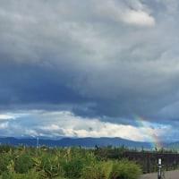 リンゴと雲と虹と
