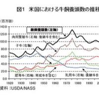 アメリカの肉牛産業と日本の肉牛生産