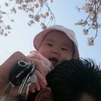 お花見(^○^)