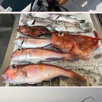 なんちゃって漁師の初めての深海釣りはムツが釣れただけ。