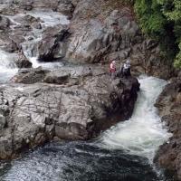 今日の鮎滝_170526