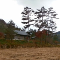 晩秋の黒沢湿原1 (16-1203)