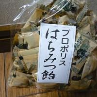 【160923ツアー11】浅川養蜂場の『はちみつ飴』@東茨城郡城里町