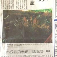 徳島新聞( ´ ▽ ` )ノ