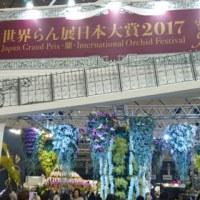 世界らん展 2017