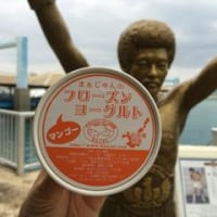 フローズンヨーグルト|石垣島