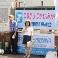 ピースパレード、市民連合柏駅宣伝行動