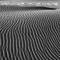 第55回 ダムと砂丘  あんなに広大だった砂丘が消えていく、砂丘になるはずだった砂はダムに溜まっている。