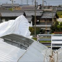 4月29日(土) 天気予報どおり・・・