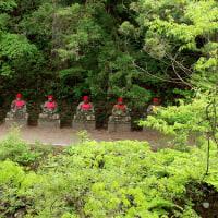 栃木 日光東照宮と日光植物園を歩く(5月12日)