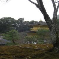 京都・広島旅行 卒業