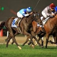 大魔神の愛馬・ヴィブロスがドバイターフ制覇!ドバイWCは世界最強馬・アロゲートが完勝。