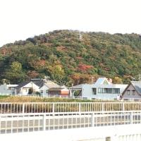 沼津市民の憩いの山