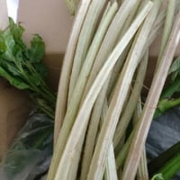 梅に、アスパラガスに、山菜
