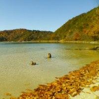 紅葉と団子と温泉と彼氏