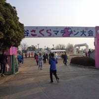 第27回熊谷さくらマラソン(伴走)