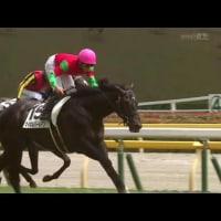 ジョーカプチーノがJRA新馬勝ち