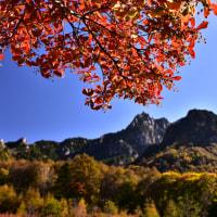秋晴れの日に~
