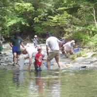 水の生物と遊ぼう