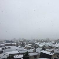 東京で初雪!