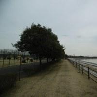 彩湖1周トレーニング