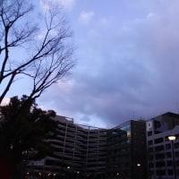 今日の私は806 【1月24日の博多の朝です】