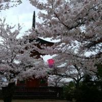 My short trip to Shimane and Hiroshima