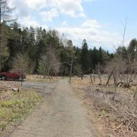 小荒川林道