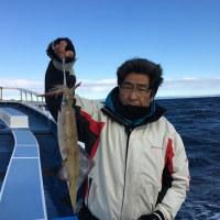 11日スルメ&ヤリイカ釣果